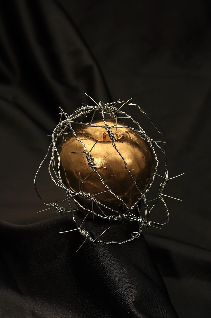 Яблоко в колючке
