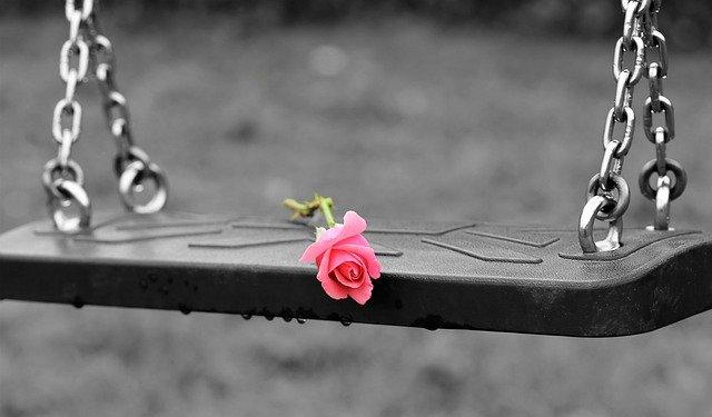 Роза на качели